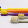 Colorful Adult Toothbrush